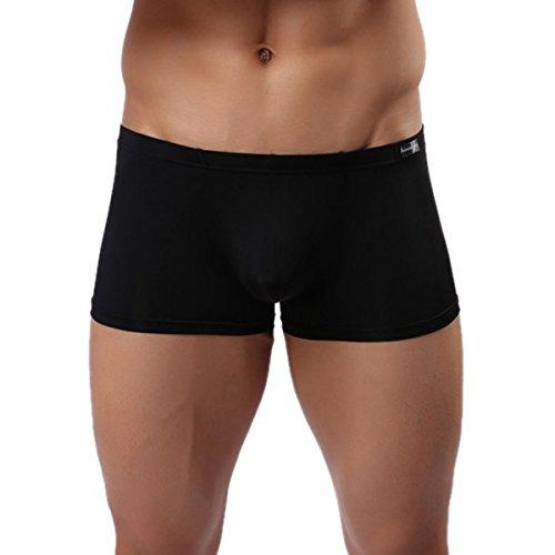 Panegy Herren Low Rise Transparent Glatt Nylon Boxershorts Boxer Briefs Unterwäsche Cool Atmungsaktiv Viskose...