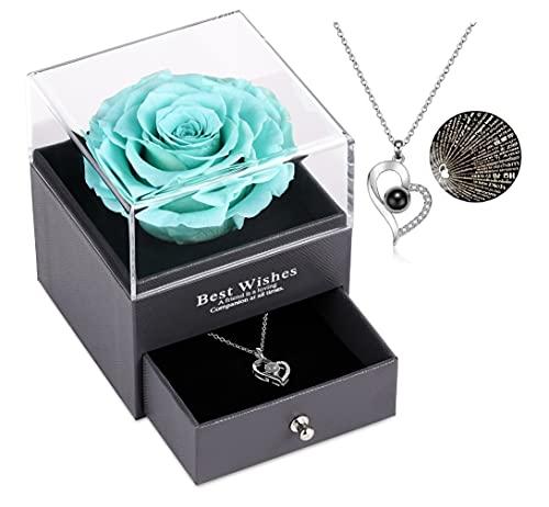 Echte Rose mit Liebe Sie Halskette Geschenk für sie, Rosenblume zum Valentinstag Muttertag Jubiläum...